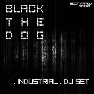 Industrial DJ Pic